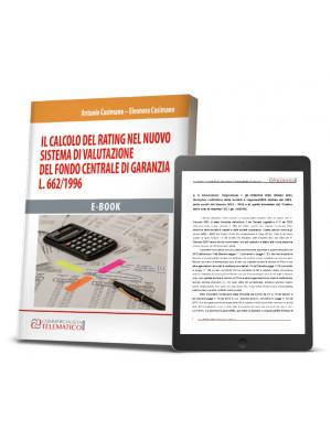 Ebook | Il calcolo del rating nel nuovo sistema di valutazione del Fondo centrale di garanzia. L. 662/1996