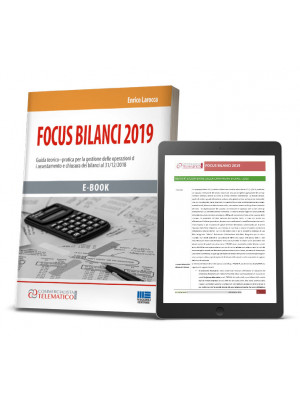Ebook | Focus Bilanci 2019