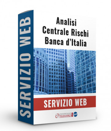 SERVIZIO web analisi centrale dei rischi banca d italia