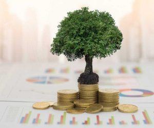 valutazione economica immobilizzazioni materiali