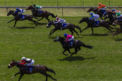 trascuranza-di-sprint-di-corsa-di-cavalli-27865131