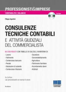 consulenze tecniche contabili
