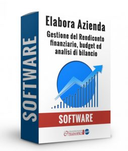 Elabora azienda software gestione rendiconto finanziario budget e bilancio