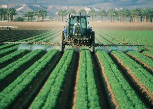 Agricoltura: denuncia/comunicazione di infortunio online dal 1° ottobre