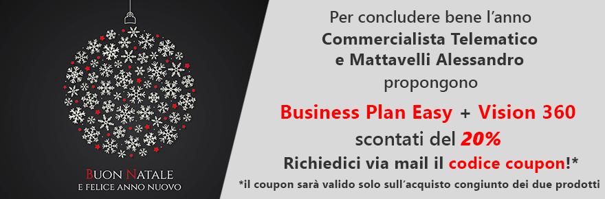 promozione di natale business plan e analisi bilancio