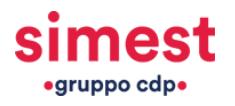 SIMEST (Società Italiana per le Imprese Miste all'Estero)