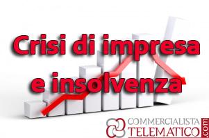 Le procedure di regolazione della crisi e dell'insolvenza