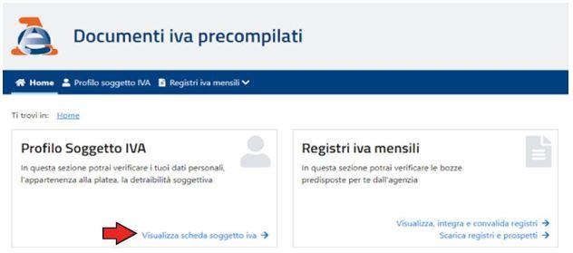 Sezione Profilo Soggetto IVA
